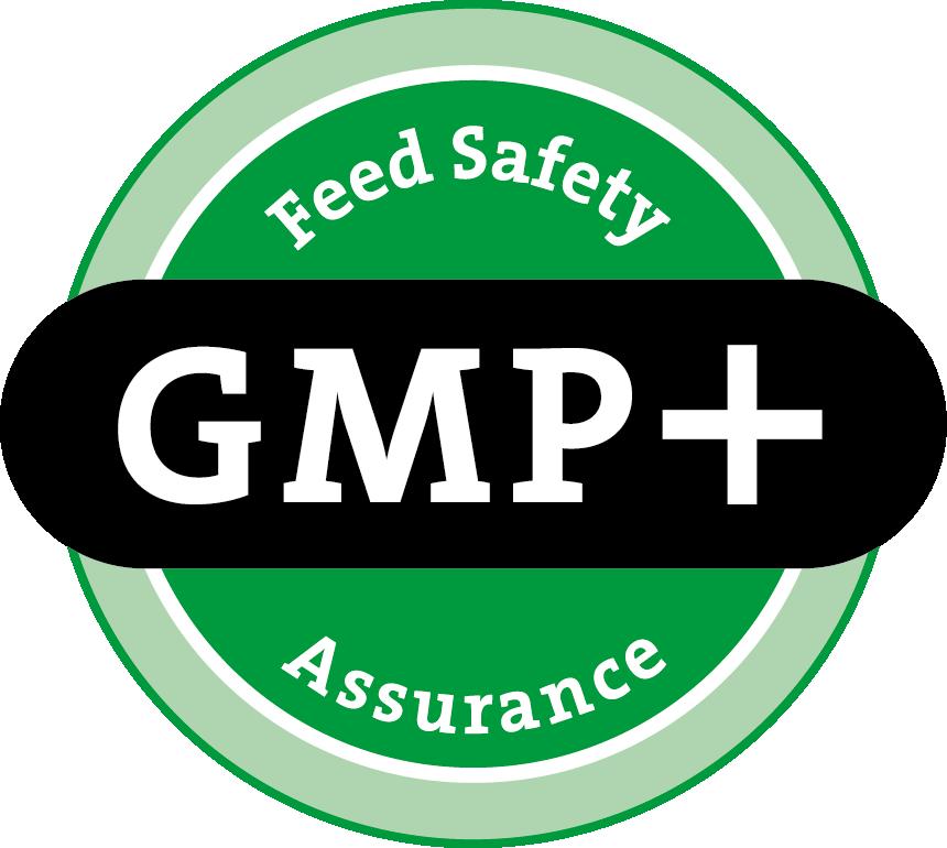 GMP FSA Logo