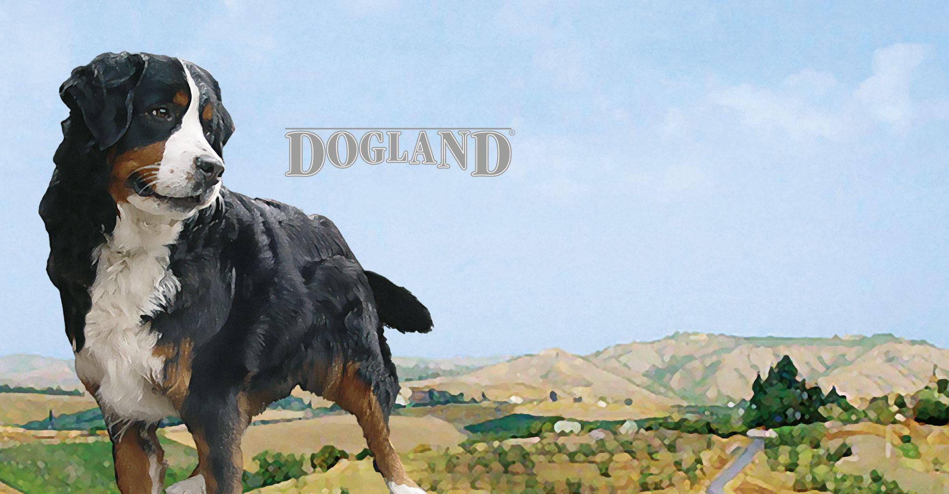 Dogland Trockennahrung  für Hunde